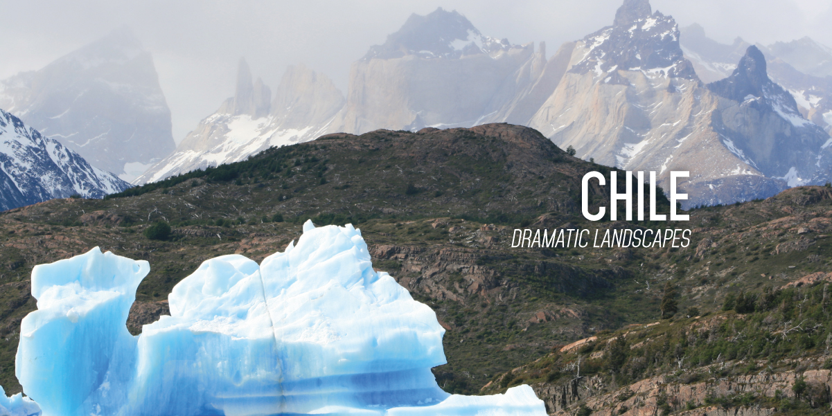 CHILE_WINEFLY_EN-15