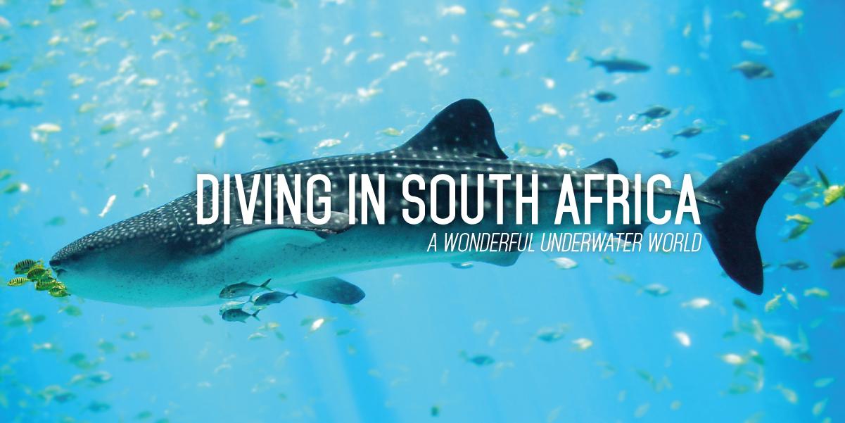 SOUTHAFRICA_WINEFLY_EN-19