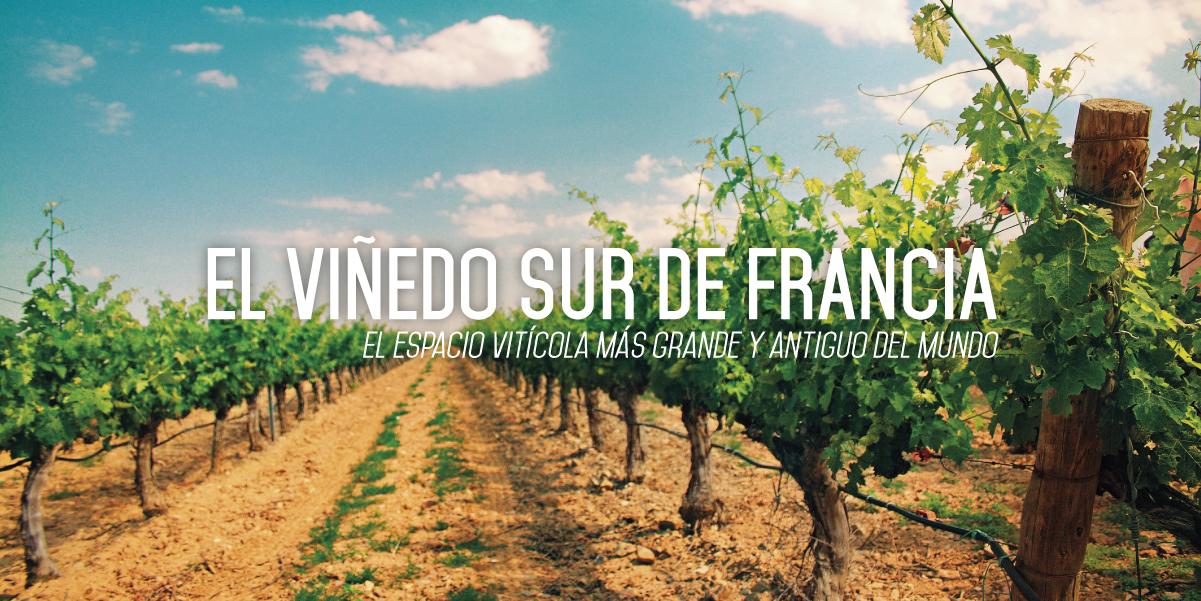 Wine&Fly_Francia_01